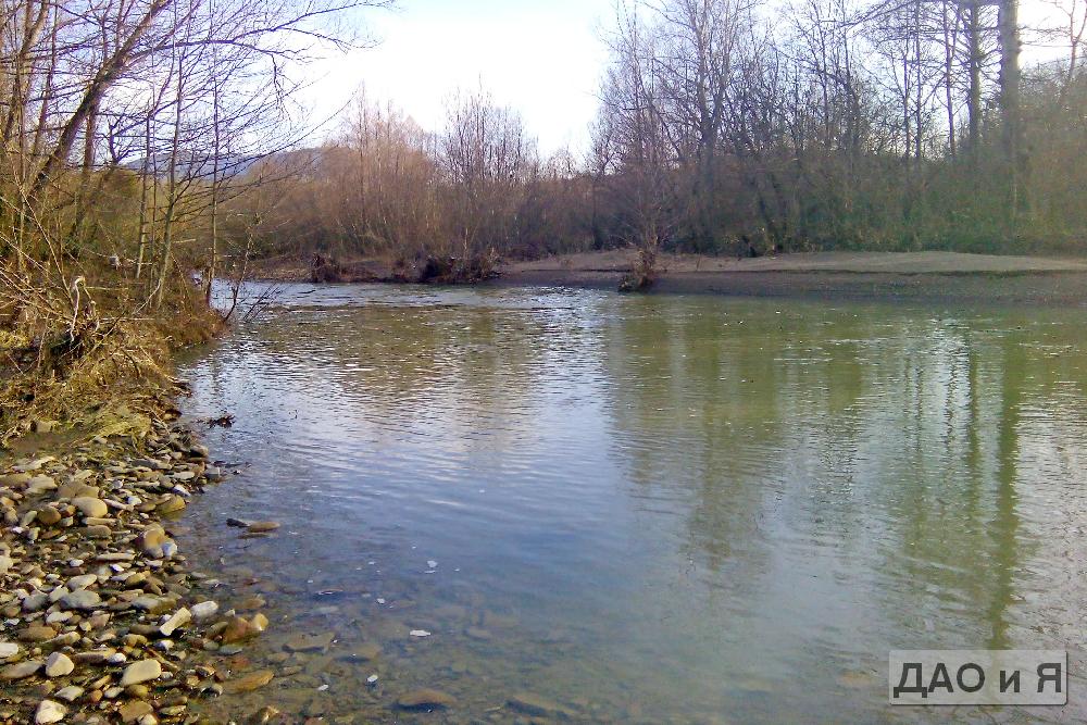 Вид с берега реки