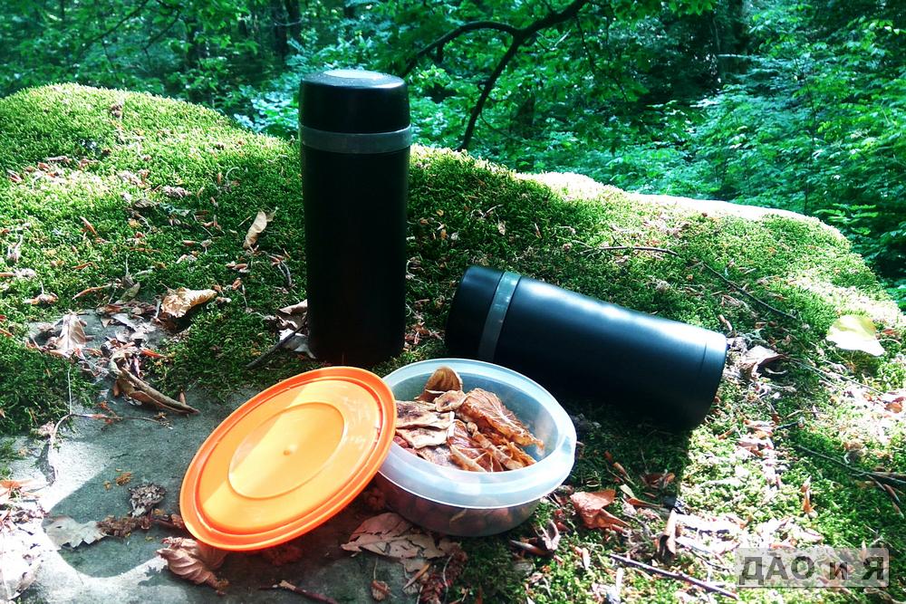 Обед в лесу